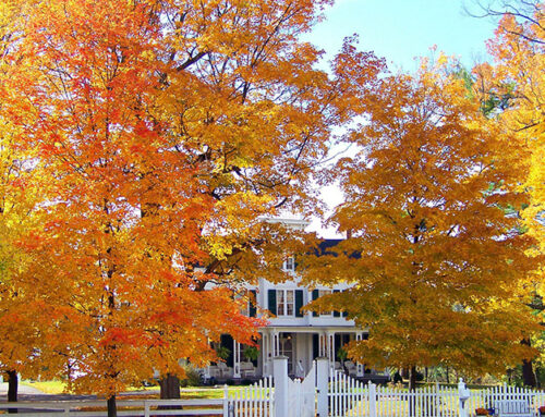 Conducting a Fall Inspection of Your Rental Property