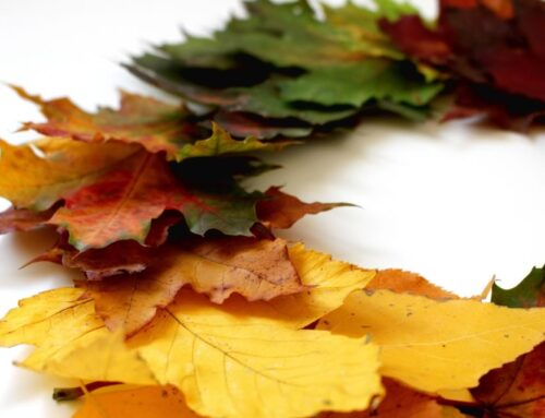 Updating Your Rental's Decor for Fall